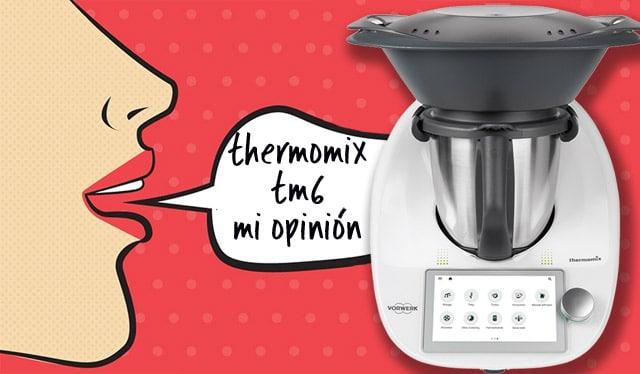mi opinión sobre la Thermomix TM6